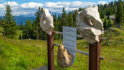 Geologielehrweg am Dobratsch in Kärnten